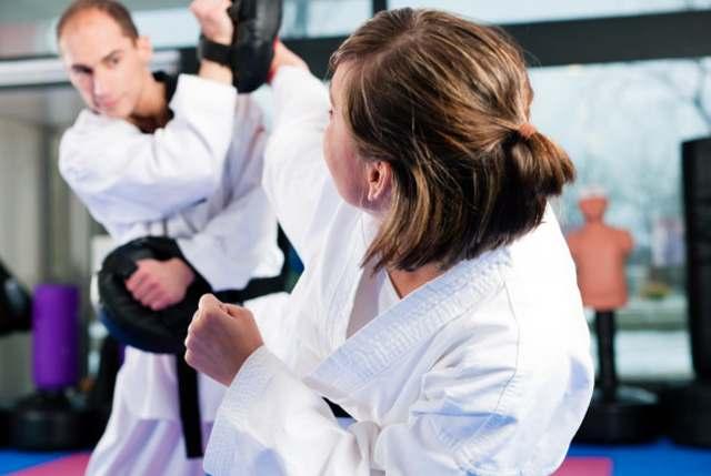 Karateadult1.1, Elite Martial Arts Romeo MI