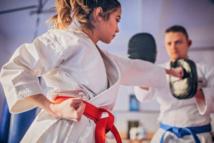 Teen1, Elite Martial Arts Romeo MI
