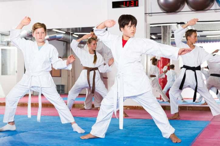 Teen2, Elite Martial Arts Romeo MI