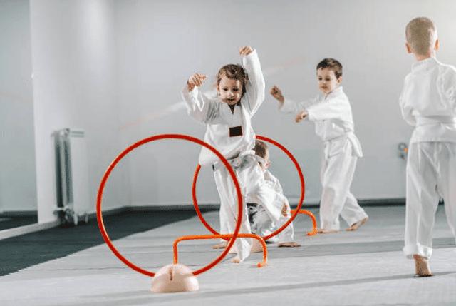 Kidsbirthday, Elite Martial Arts Romeo MI