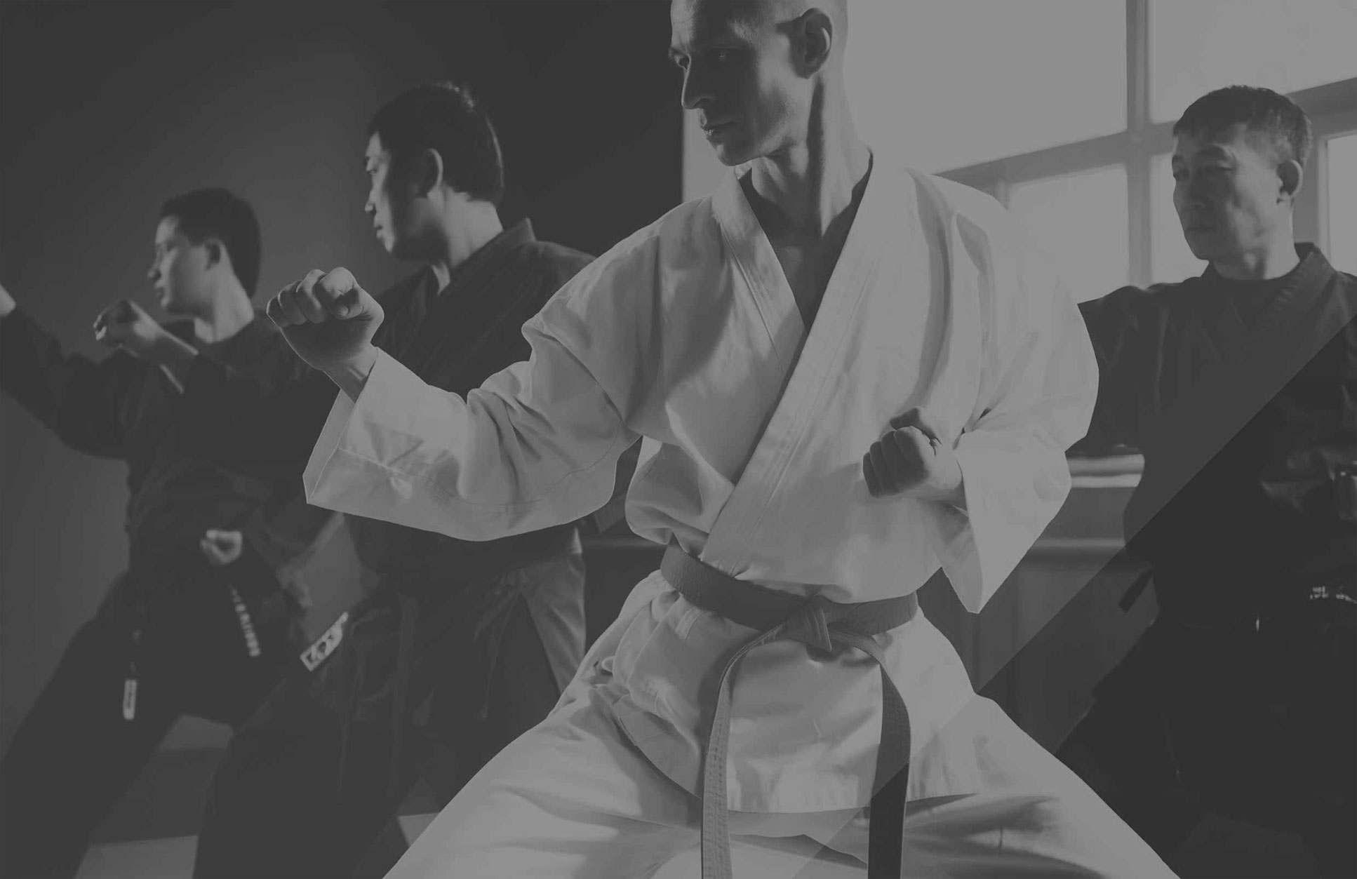 Hapkidowallpaperblkwht, Elite Martial Arts Romeo MI