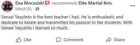 Adult2, Elite Martial Arts Romeo MI