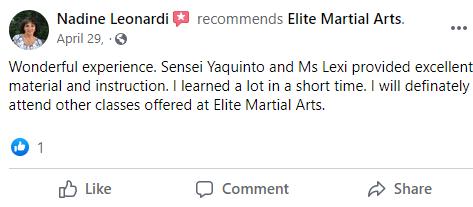 Adult4, Elite Martial Arts Romeo MI