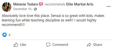 Kids3, Elite Martial Arts Romeo MI