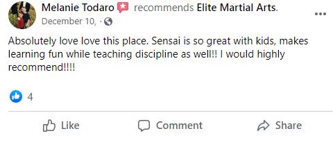 Kids4, Elite Martial Arts Romeo MI